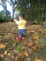 落ち葉とたわむれる娘