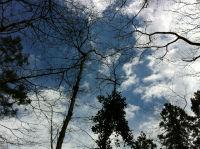 晴れ渡る空