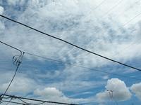 久しぶりに見えた青空にかかる雲はまるで秋の雲です。